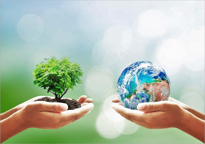 Review sách Sống không rác – Thay Đổi Thế Giới Từ Những Điều Nhỏ Nhất